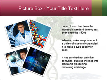 DNA shaped tree with trunks PowerPoint Template - Slide 23
