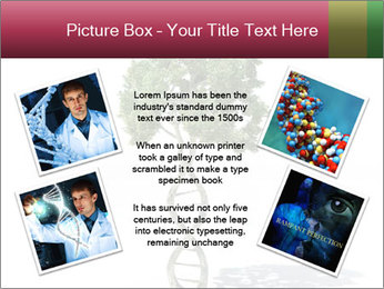 DNA shaped tree with trunks PowerPoint Templates - Slide 24
