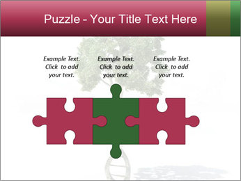 DNA shaped tree with trunks PowerPoint Templates - Slide 42