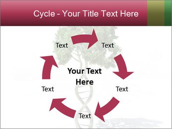 DNA shaped tree with trunks PowerPoint Template - Slide 62