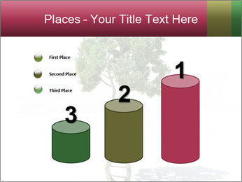 DNA shaped tree with trunks PowerPoint Templates - Slide 65