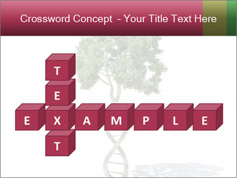 DNA shaped tree with trunks PowerPoint Template - Slide 82