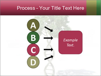 DNA shaped tree with trunks PowerPoint Template - Slide 94