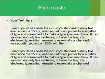 Italian pesto sauce PowerPoint Templates - Slide 2