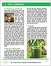 0000094011 Word Template - Page 3