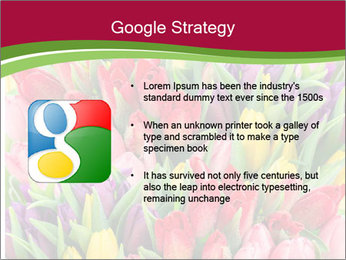 Bouquet of multicolor tulips PowerPoint Template - Slide 10