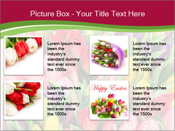 Bouquet of multicolor tulips PowerPoint Template - Slide 14