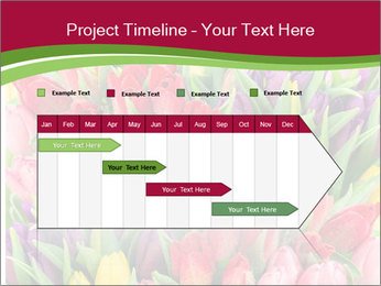 Bouquet of multicolor tulips PowerPoint Template - Slide 25