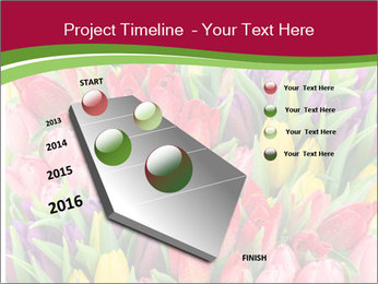 Bouquet of multicolor tulips PowerPoint Template - Slide 26