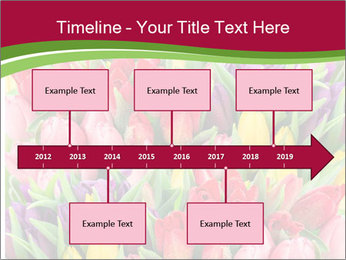 Bouquet of multicolor tulips PowerPoint Template - Slide 28
