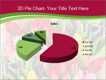 Bouquet of multicolor tulips PowerPoint Template - Slide 35