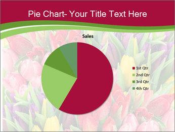 Bouquet of multicolor tulips PowerPoint Template - Slide 36