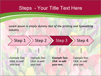Bouquet of multicolor tulips PowerPoint Template - Slide 4
