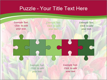 Bouquet of multicolor tulips PowerPoint Template - Slide 41