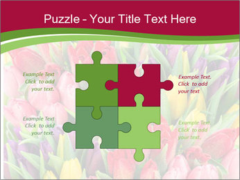 Bouquet of multicolor tulips PowerPoint Template - Slide 43