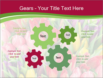 Bouquet of multicolor tulips PowerPoint Template - Slide 47
