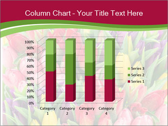 Bouquet of multicolor tulips PowerPoint Template - Slide 50