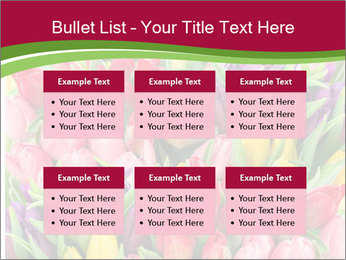 Bouquet of multicolor tulips PowerPoint Template - Slide 56