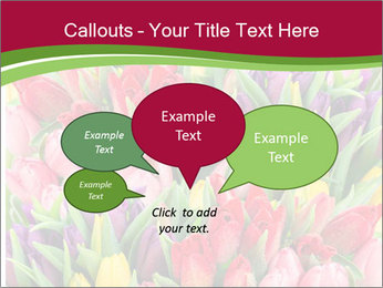 Bouquet of multicolor tulips PowerPoint Template - Slide 73
