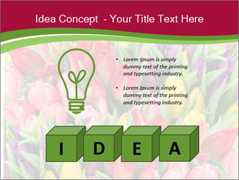 Bouquet of multicolor tulips PowerPoint Template - Slide 80