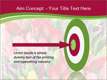 Bouquet of multicolor tulips PowerPoint Template - Slide 83
