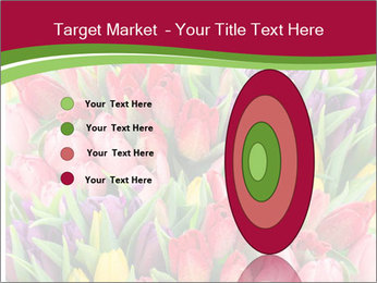 Bouquet of multicolor tulips PowerPoint Template - Slide 84
