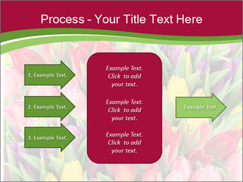 Bouquet of multicolor tulips PowerPoint Template - Slide 85