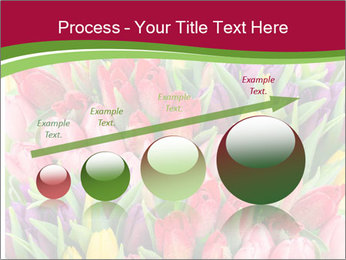 Bouquet of multicolor tulips PowerPoint Template - Slide 87
