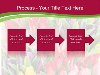 Bouquet of multicolor tulips PowerPoint Template - Slide 88