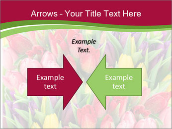 Bouquet of multicolor tulips PowerPoint Template - Slide 90