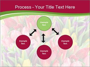 Bouquet of multicolor tulips PowerPoint Template - Slide 91