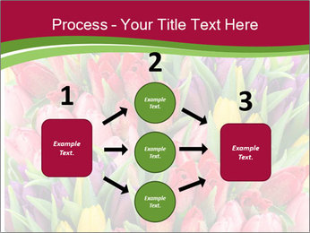 Bouquet of multicolor tulips PowerPoint Template - Slide 92