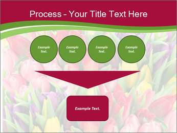Bouquet of multicolor tulips PowerPoint Template - Slide 93