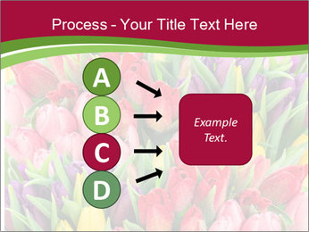 Bouquet of multicolor tulips PowerPoint Template - Slide 94