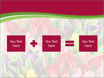 Bouquet of multicolor tulips PowerPoint Template - Slide 95