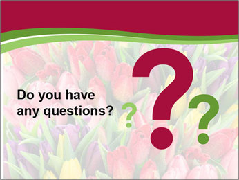 Bouquet of multicolor tulips PowerPoint Template - Slide 96