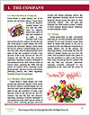 0000094014 Word Template - Page 3