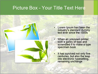 Japanese Garden PowerPoint Template - Slide 20