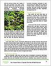 0000094018 Word Template - Page 4