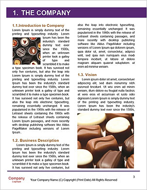 0000094024 Word Template - Page 3