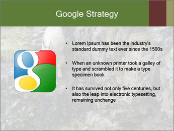 Mountain Goat on Cliff PowerPoint Template - Slide 10