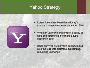 Mountain Goat on Cliff PowerPoint Template - Slide 11