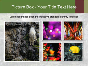 Mountain Goat on Cliff PowerPoint Template - Slide 19