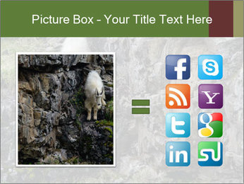 Mountain Goat on Cliff PowerPoint Template - Slide 21
