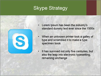 Mountain Goat on Cliff PowerPoint Template - Slide 8