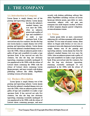 0000094032 Word Template - Page 3