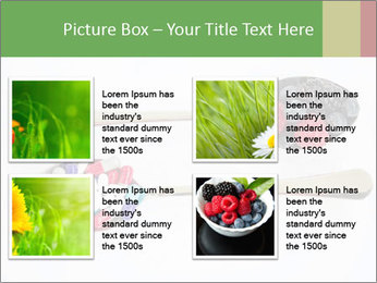 Berries and pills PowerPoint Templates - Slide 14