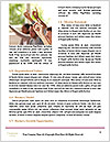 0000094049 Word Template - Page 4