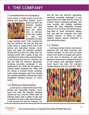 0000094052 Word Template - Page 3