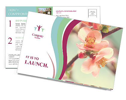 0000094059 Postcard Templates